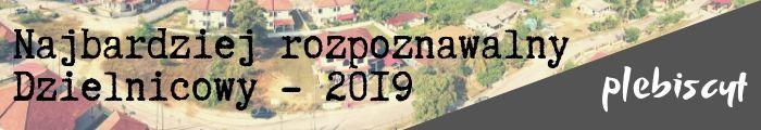 Plebiscyt - dzielnicowy powiatu bialskiego 2019