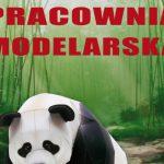 Zajęcia modelarskie w MOK w Międzyrzecu Podlaskim (zaproszenie)