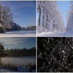 Rokitno: Zimowy konkurs fotograficzny rozstrzygnięty (galeria)