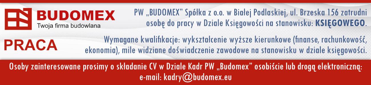 Budomex - praca