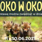 Oko w oko. Wystawa fotografii przyrodniczej w GOK w Janowie Podlaskim (zaproszenie)
